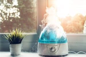 5 dicas para umidificar o ar da sua casa